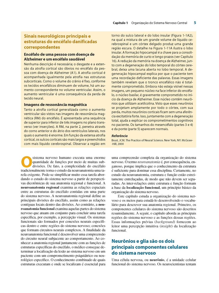 Neuroanatomia Texto E Atlas