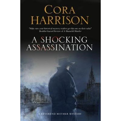A Shocking Assassination - A Reverend Mother Mystery Set In 1920s' Ireland
