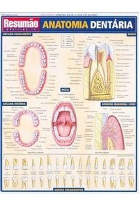 Resumão Anatomia Dentária - França,Maria Ignez T. pdf epub