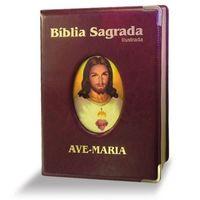 Em Portuguese do Brasil B/íblia Sagrada Ave-Maria Ilustrada Preta