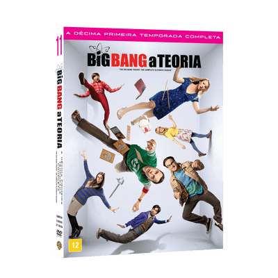 DVD Big Bang A Teoria - 11ª Temporada - 2 Discos
