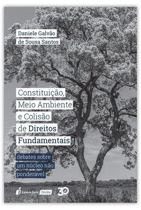 Constituição, Meio Ambiente E Colisão De Direitos Fundamentais - Santos,Daniele Galvão de Sousa pdf epub