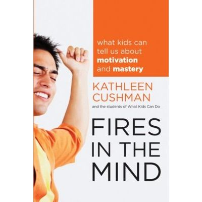 Fires in the Mind - What Kids Can Tell Us About Motivation and Mastery