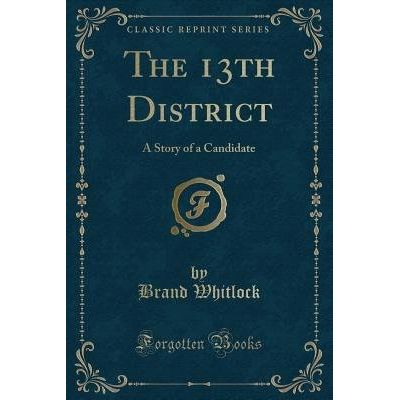 The 13th District - A Story Of A Candidate (Classic Reprint)
