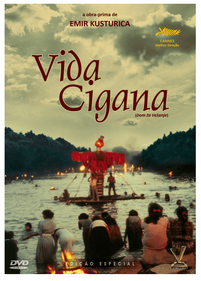 Vida Cigana - Edição Especial - DVD - Saraiva