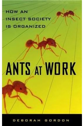 Ants At Work - How An Insect Society Is Organized - Gordon,Deborah   Hoshan.org