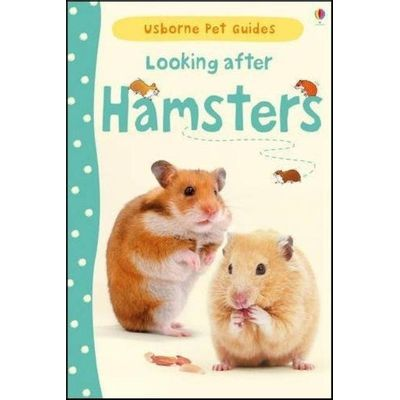 Looking After Hamsters