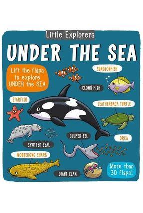 Little Explorers - Under The Sea - Little Bee Books   Hoshan.org
