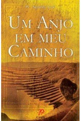 Um Anjo em Meu Caminho - Santos,Agnaldo José dos   Hoshan.org