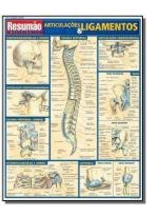Resumão Articulações & Ligamentos