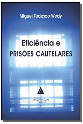 Eficiência e Prisões Cautelares - Wedy,Miguel Tedesco pdf epub