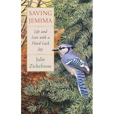 Saving Jemima - Life And Love With A Hard-Luck Jay