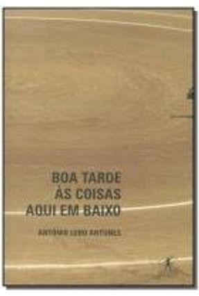 Boa Tarde Às Coisas Aqui em Baixo - Antunes,António Lobo pdf epub