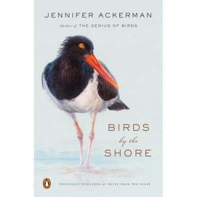 Birds By The Shore - Observing The Natural Life Of The Atlantic Coast