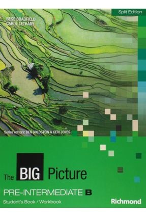 The Big Picture Pre Intermediate - B - BESS BRADFIELD Carol Lethaby pdf epub