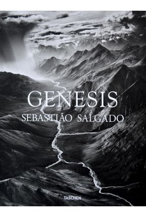 Genesis - 16 Posters - Salgado,Sebastião pdf epub