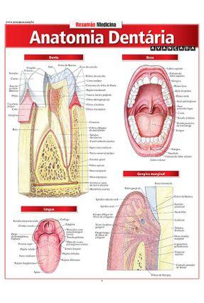 Resumão Medicina - Anatomia Dentária - Avançada - Perez,Vicent pdf epub