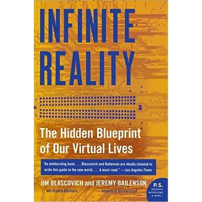 Infinite Reality - The Hidden Blueprint Of Our Virtual Lives